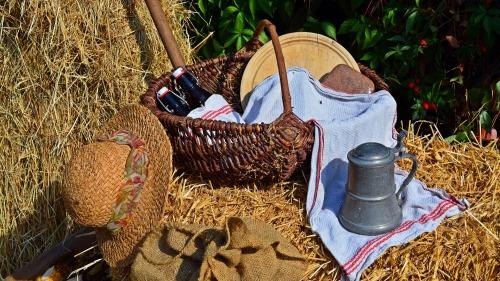 harvest-1642290_1920
