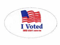 i-voted-seven