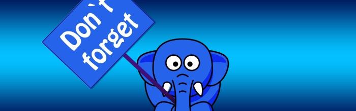 elephant-1090834