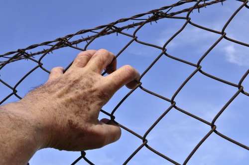 barbed-wire-1408454.jpg