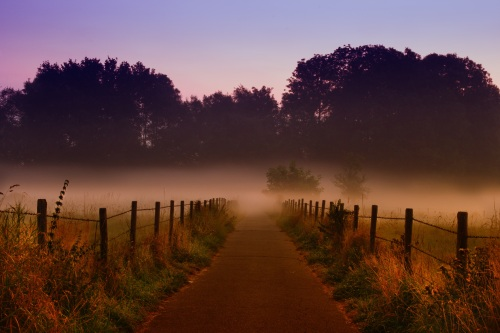 dawn-3356478