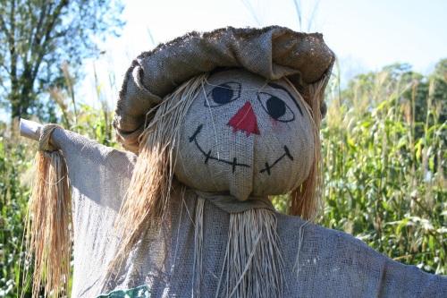 scarecrow-1714851