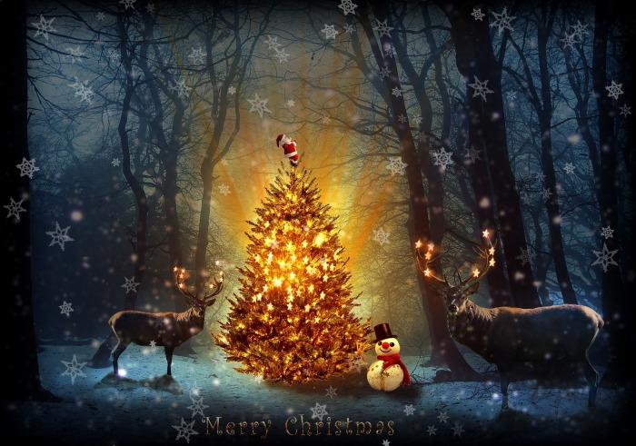 christmas-1914424_1920
