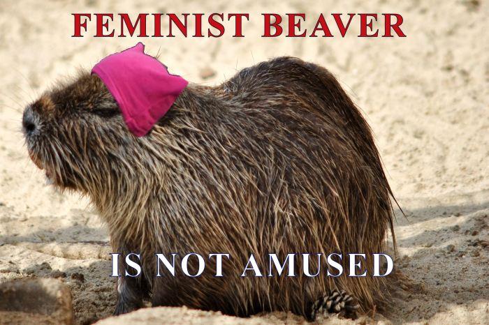 FEMINISTBEAVER
