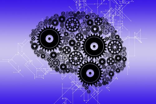 brain-4521223_1920