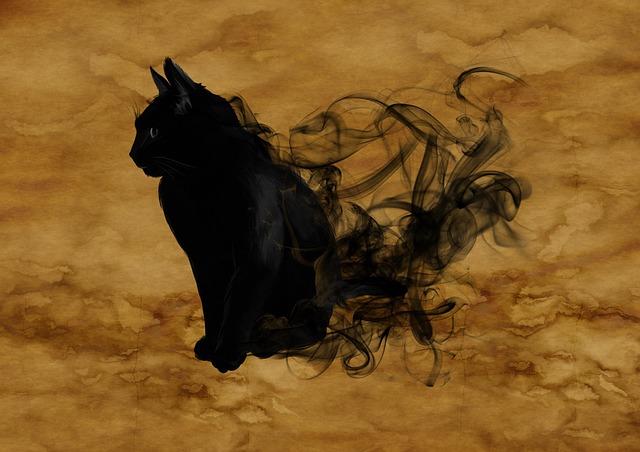 cat-1002850_640