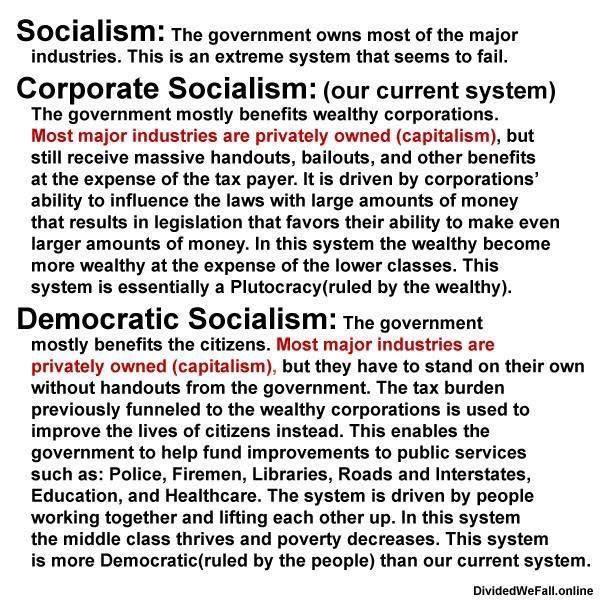 Image 2 Socialist Stupidity(1)