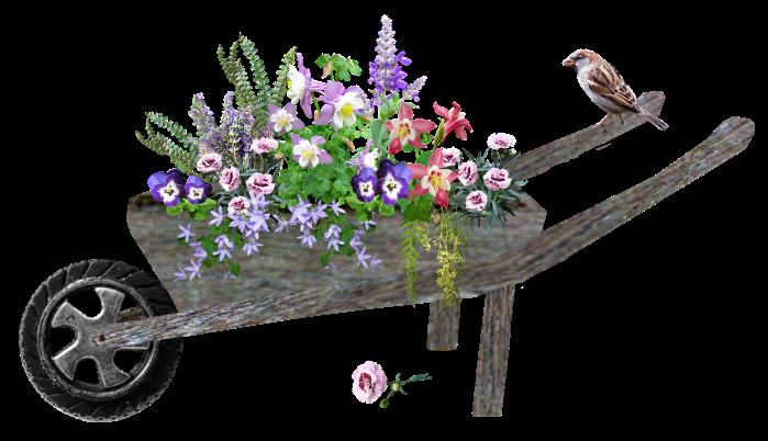 wheelbarrow-4955698_1920